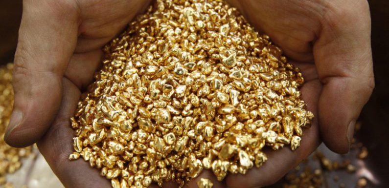 Клад с золотом, найденный амурчанином, привел к штрафу и условному сроку