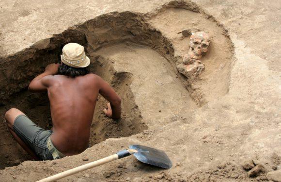 Археологами найдена древняя драгоценная маска в Египте