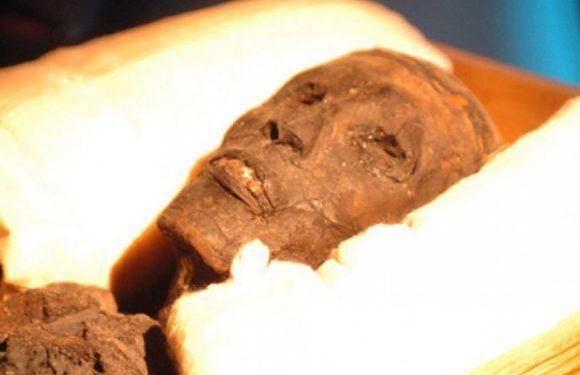 Сокровища «потерянных» фараонов