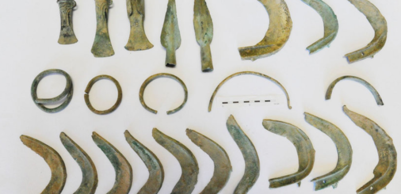 В Чехии пес выкопал клад бронзового века