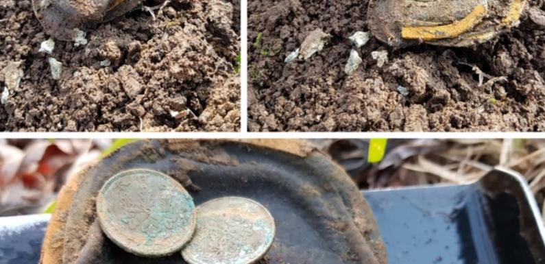 На берегу Сахалина кладоискатель отыскал кошелек со старинными японскими монетами