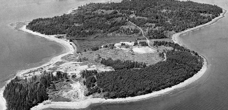 Таинственный клад острова Оук