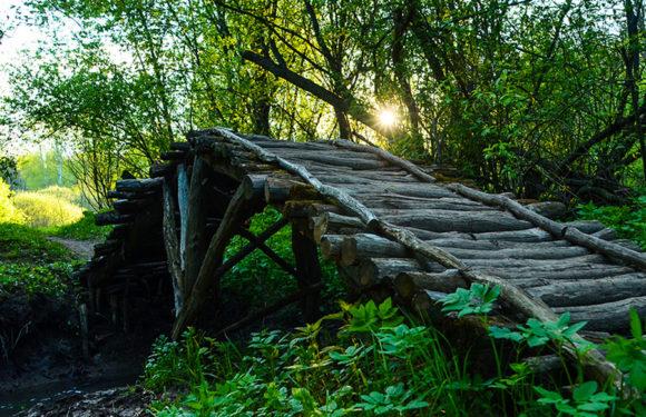 «В три жердочки березовый мосток» — поиск на переправах