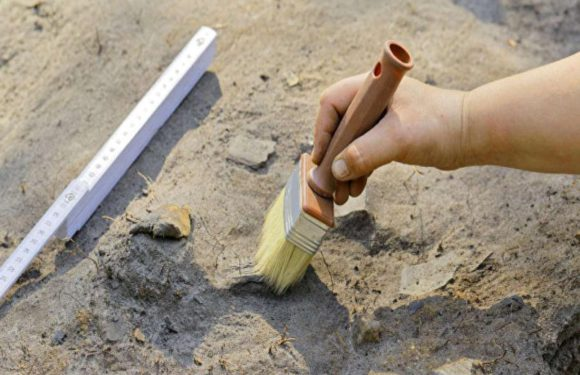Под Псковом найден клад викингов