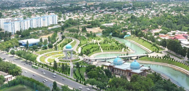 В Ташкенте найден клад ценой в миллионы долларов