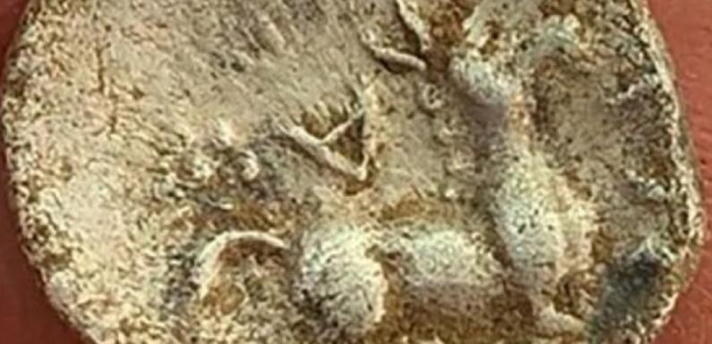 В Британии найдена 2000-летняя монета с изображением осла из «Шрека»