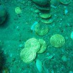 Дайверы обнаружили старинный клад у берегов Флориды