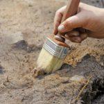 В Новой Москве археологи нашли свыше тысячи артефактов XIV-XIX веков