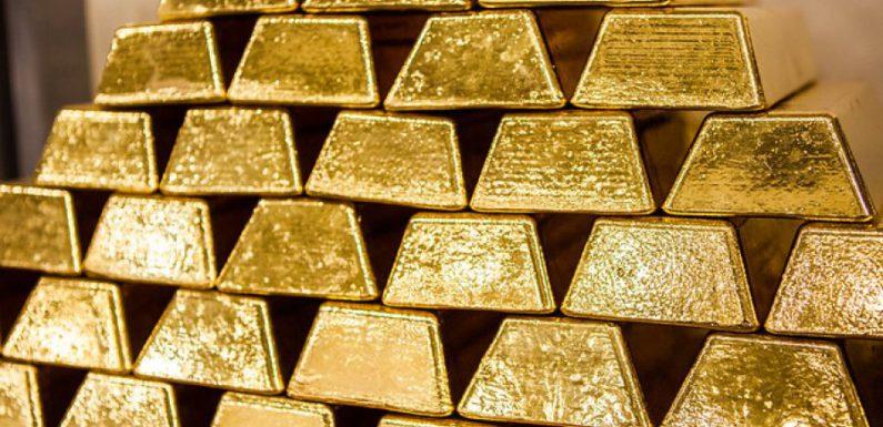 При покупке особняка во Франции нашли золотой клад