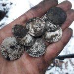 На ферме в Венгрии найден клад из 7000 серебряных монет