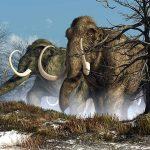 Первая в мире ловушка для мамонтов найдена в Мексике