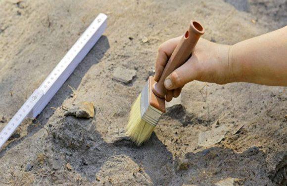 В Москве найдено свыше 200 керамических артефактов