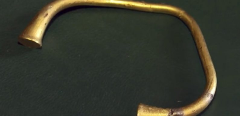 Калининградец нашел золотой браслет вождя сарматов во время посадки картошки